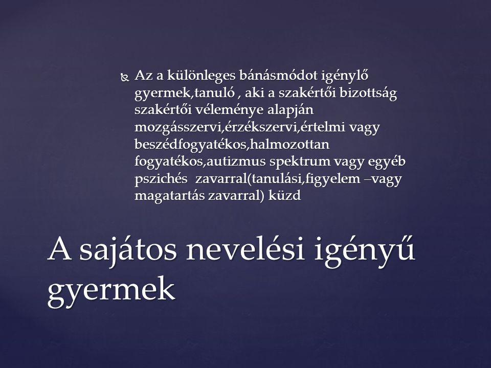  Diszlexia-olvasási nehézség  Diszgráfia-írásproblémák  Diszkalkúlia- számfogalom kialakulatlansága Részleges mentális retardációk