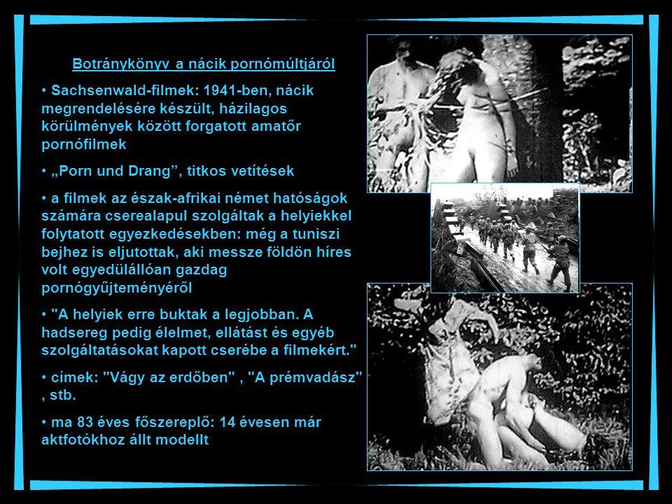 Botránykönyv a nácik pornómúltjáról Sachsenwald-filmek: 1941-ben, nácik megrendelésére készült, házilagos körülmények között forgatott amatőr pornófil