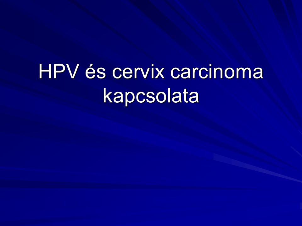 MSD Quadrivalens HPV vakcina Eredmények Biztonságosság Biztonságosság –A mai napig >13,000 nőnek adtak HPV vakcinát –A vakcina általánosságban jól tolerálható Immunogenitás Immunogenitás –A vakcina magas anti-HPV titer választ eredményez –A csúcs anti-HPV 6, 11, 16, 18 válasz geometriai átlag-titere 58.7-szerese, mint akiknek természetes infekciójuk volt Hatékonyság Hatékonyság –Vizsgálatok bizonyították, hogy a HPV-16 vakcina csökkenti a HPV-16 fertőzés kockázatát a HPV-16 seronegatív nőkben