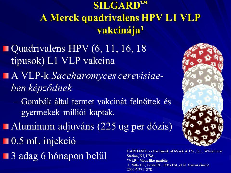 GARDASIL is a trademark of Merck & Co., Inc., Whitehouse Station, NJ, USA. *VLP = Virus-like particle. 1. Villa LL, Costa RL, Petta CA, et al. Lancet