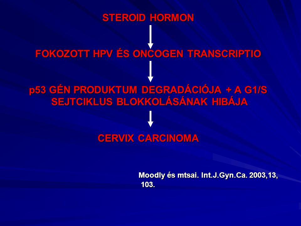 STEROID HORMON FOKOZOTT HPV ÉS ONCOGEN TRANSCRIPTIO p53 GÉN PRODUKTUM DEGRADÁCIÓJA + A G1/S SEJTCIKLUS BLOKKOLÁSÁNAK HIBÁJA CERVIX CARCINOMA Moodly és