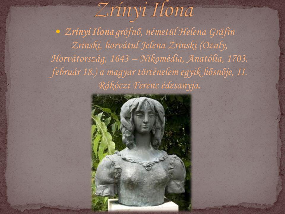Zrínyi Ilona grófnő, németül Helena Gräfin Zrinski, horvátul Jelena Zrinski (Ozaly, Horvátország, 1643 – Nikomédia, Anatólia, 1703. február 18.) a mag