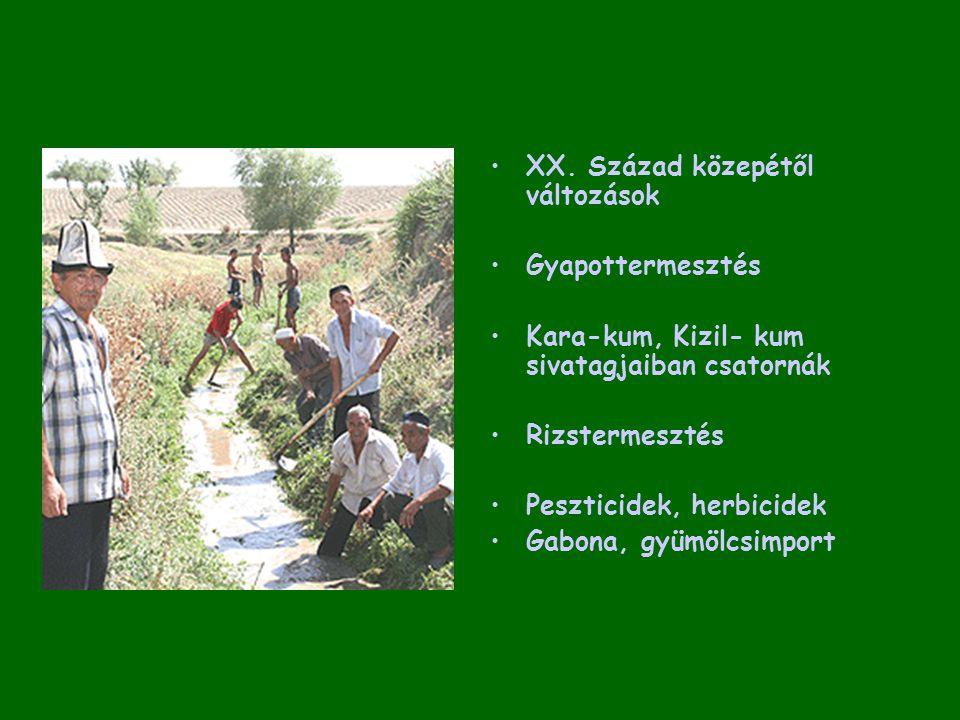 XX. Század közepétől változások Gyapottermesztés Kara-kum, Kizil- kum sivatagjaiban csatornák Rizstermesztés Peszticidek, herbicidek Gabona, gyümölcsi