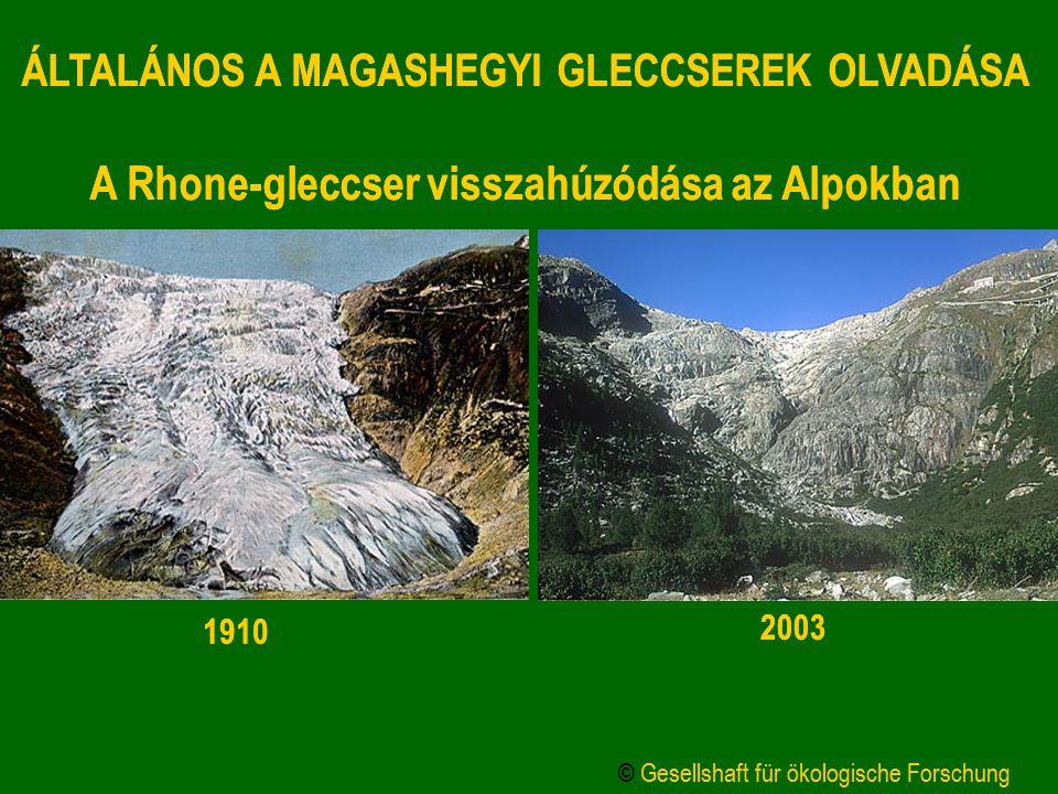 ÁLTALÁNOS A MAGASHEGYI GLECCSEREK OLVADÁSA A Rhone-gleccser visszahúzódása az Alpokban 1910 2003 © Gesellshaft für ökologische Forschung ÁLTALÁNOS A M