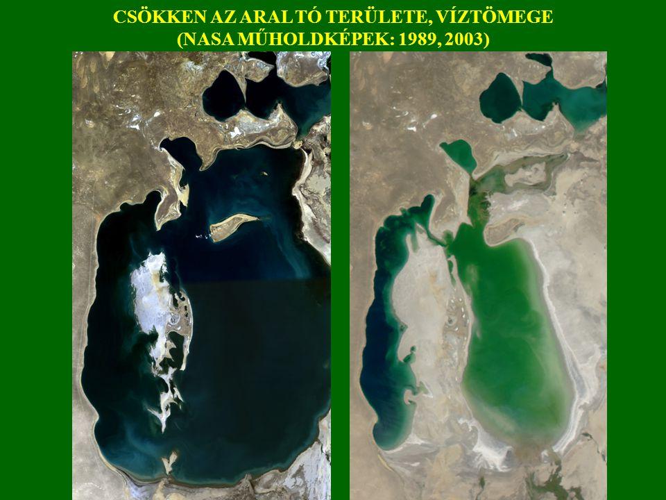 CSÖKKEN AZ ARAL TÓ TERÜLETE, VÍZTÖMEGE (NASA MŰHOLDKÉPEK: 1989, 2003)
