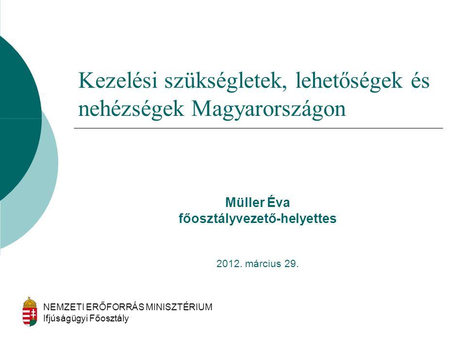 Müller Éva főosztályvezető-helyettes 2012. március 29. NEMZETI ERŐFORRÁS MINISZTÉRIUM Ifjúságügyi Főosztály Kezelési szükségletek, lehetőségek és nehé