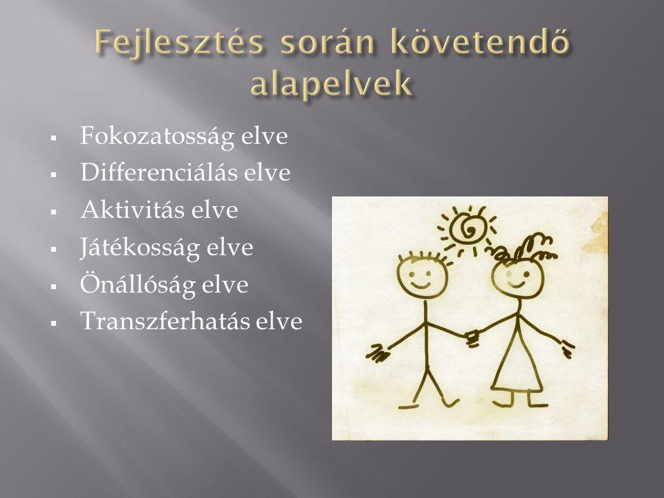 Fokozatosság elve  Differenciálás elve  Aktivitás elve  Játékosság elve  Önállóság elve  Transzferhatás elve