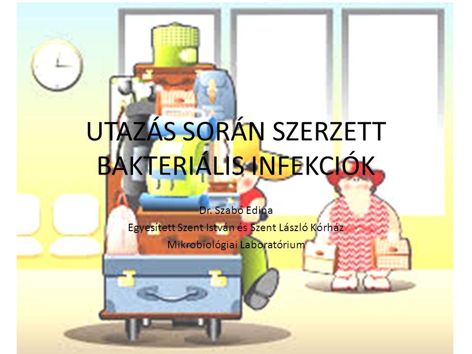 RIZIKÓFAKTOROK Úti cél Utazás célja Utazás időpontja (évszak) Életkor Egészségi állapot Utazás időtartama Tervezett program Higiénés viszonyok