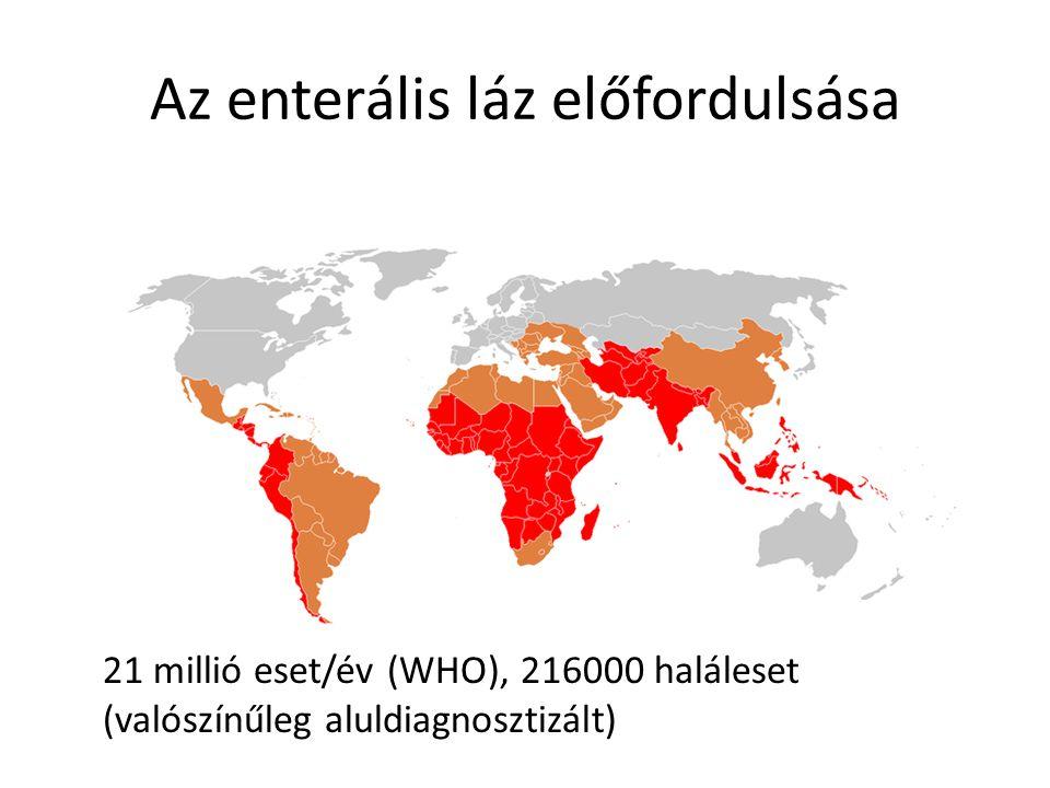Az enterális láz előfordulsása 21 millió eset/év (WHO), 216000 haláleset (valószínűleg aluldiagnosztizált)