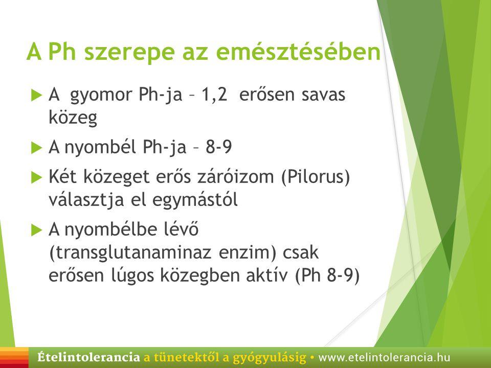 A Ph szerepe az emésztésében  A gyomor Ph-ja – 1,2 erősen savas közeg  A nyombél Ph-ja – 8-9  Két közeget erős záróizom (Pilorus) választja el egym
