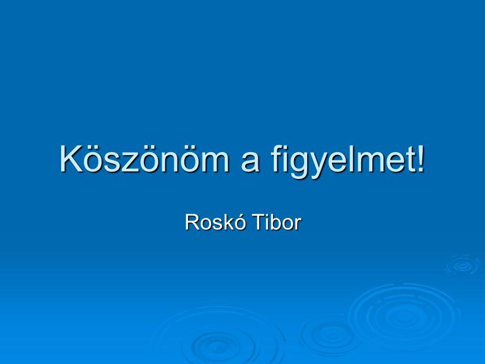 Köszönöm a figyelmet! Roskó Tibor
