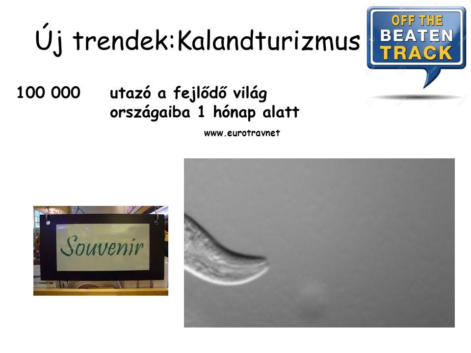 Romantikus nyaralás … horogférgekkel Cutan Larva Migrans -Ancylostoma braziliense, Ancylostoma caninum, Uncinaria stenocephala