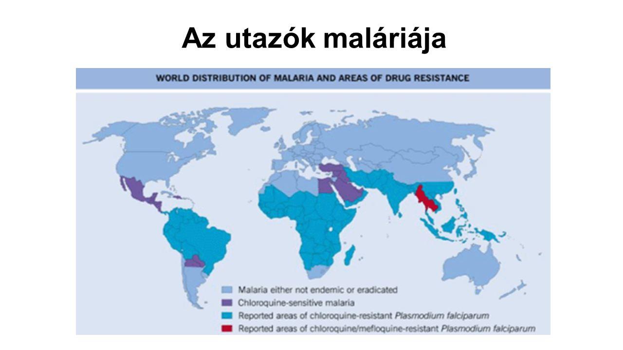 Plasmodium knowlesi 1931: leírják egy Szingapúrból Indiába importált hosszúfarkú makákóban 1932: Knowles és Das Gupta kísérlettel bizonyítja, hogy embert is képes megfertőzni A P.knowlesi-t neuroszifilisz kezelésére alkalmazták (lázkeltőként) 1965: első közlés természetes emberi fertőzésről (Maláj-félszigetről hazatérő amerikai földmérő) 1971: feltételezett természetes infekció Malajziában, 2004-ig nincs közlés