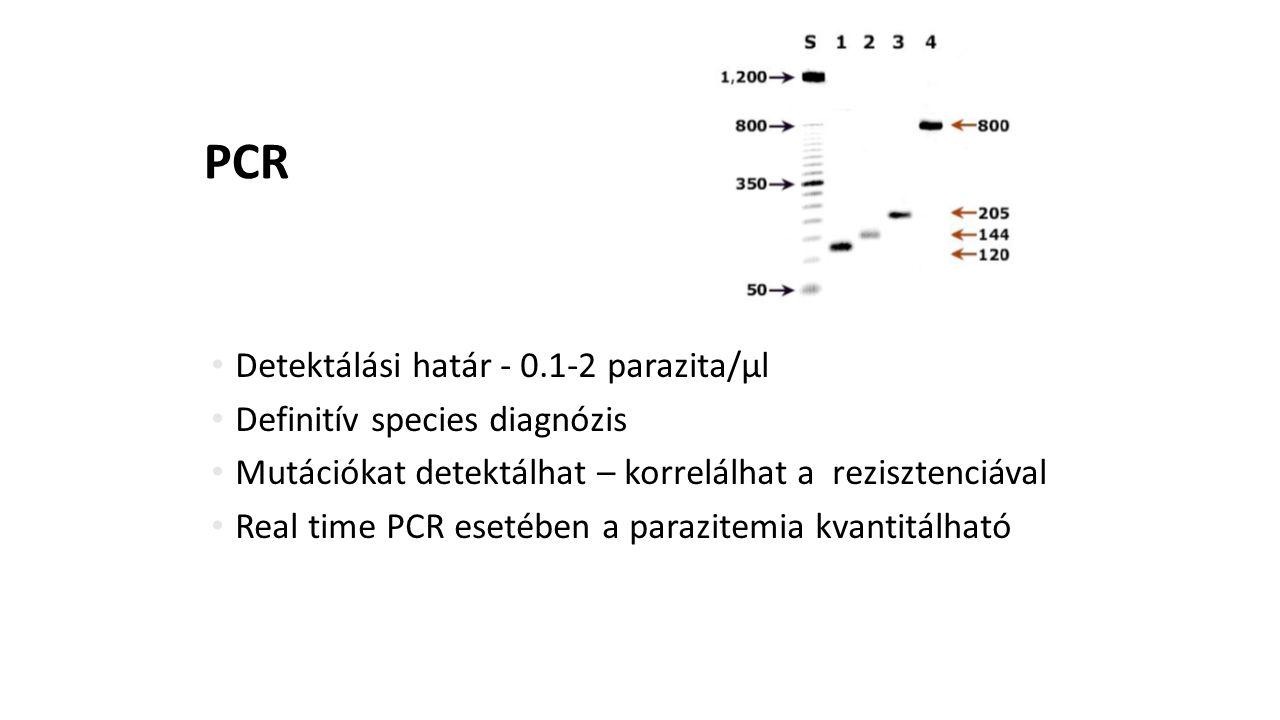PCR Detektálási határ - 0.1-2 parazita/µl Definitív species diagnózis Mutációkat detektálhat – korrelálhat a rezisztenciával Real time PCR esetében a