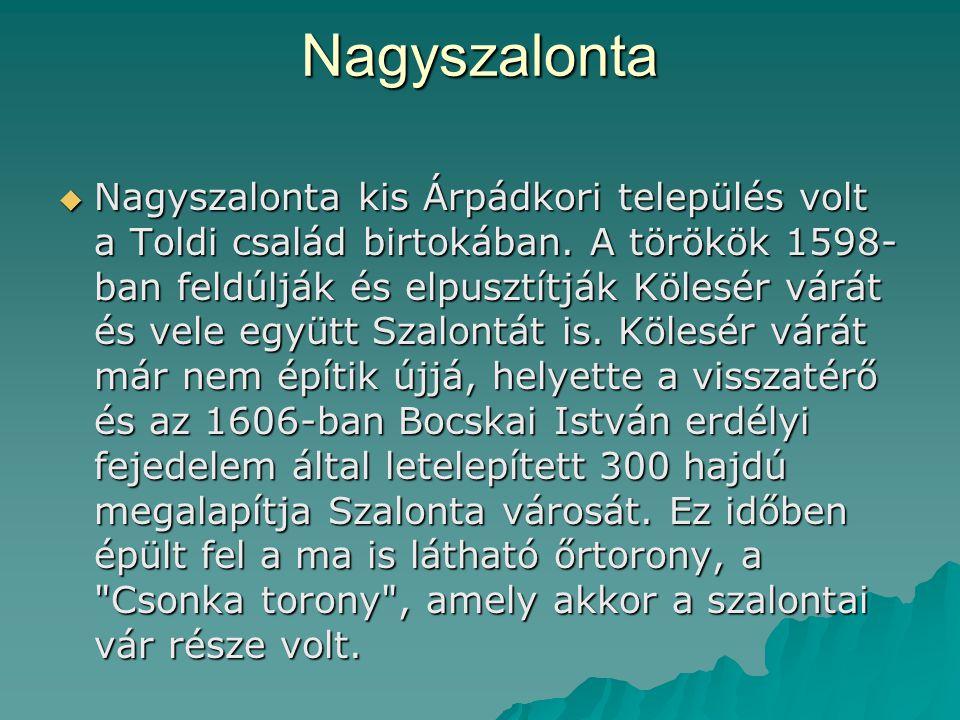 Nagyszalonta  Nagyszalonta kis Árpádkori település volt a Toldi család birtokában. A törökök 1598- ban feldúlják és elpusztítják Kölesér várát és vel