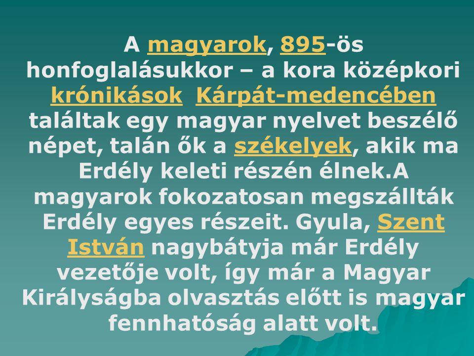 A magyarok, 895-ös honfoglalásukkor – a kora középkori krónikások Kárpát-medencében találtak egy magyar nyelvet beszélő népet, talán ők a székelyek, a