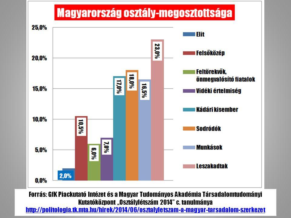"""Forrás: GfK Piackutató Intézet és a Magyar Tudományos Akadémia Társadalomtudományi Kutatóközpont """"Osztálylétszám 2014 c."""