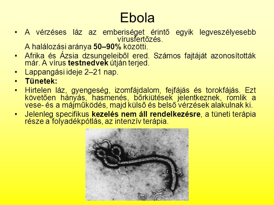 Ebola A vérzéses láz az emberiséget érintő egyik legveszélyesebb vírusfertőzés. A halálozási aránya 50–90% közötti. Afrika és Ázsia dzsungeleiből ered