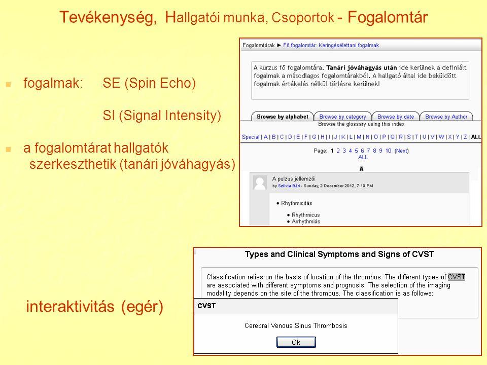 Tevékenység, H allgatói munka, Csoportok - Fogalomtár fogalmak:SE (Spin Echo) SI (Signal Intensity) a fogalomtárat hallgatók szerkeszthetik (tanári jó