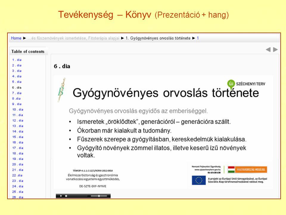 Tevékenység - AutoView Presenter videó dia képek feliratok A videó, a dia képek és a feliratok szinkronban vannak.