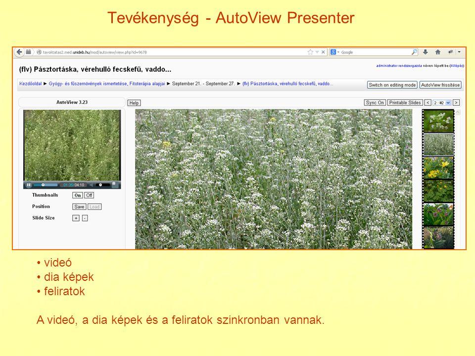 Tevékenység – bemutató kép-a képben videó tevékenység bemutató tanári magyarázat hallgatói feladat