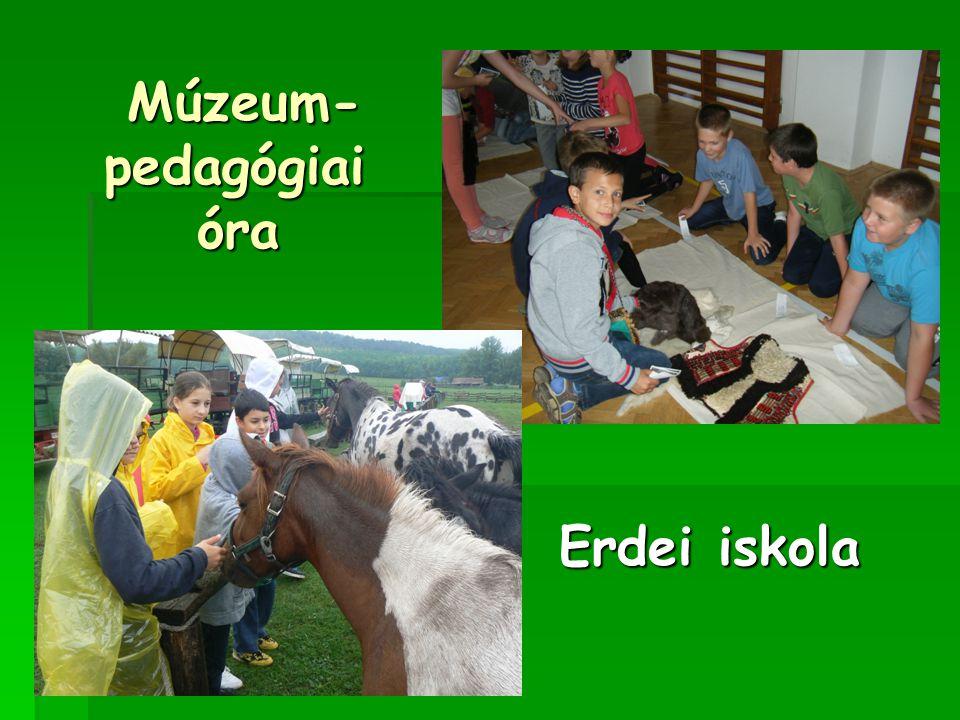 Erdei iskola Erdei iskola Múzeum- pedagógiai óra Múzeum- pedagógiai óra
