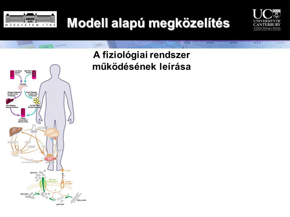 Modell alapú megközelítés A fiziológiai rendszer működésének leírása