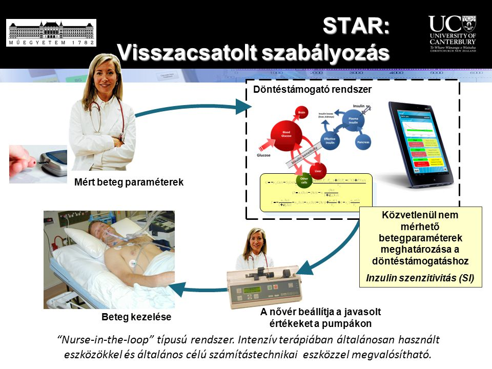 """A nővér beállítja a javasolt értékeket a pumpákon Beteg kezelése Mért beteg paraméterek """"Nurse-in-the-loop"""" típusú rendszer. Intenzív terápiában által"""