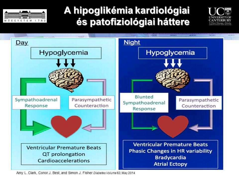 Amy L. Clark, Conor J. Best, and Simon J. Fisher Diabetes Volume 63, May 2014 A hipoglikémia kardiológiai és patofiziológiai háttere A hipoglikémia ka