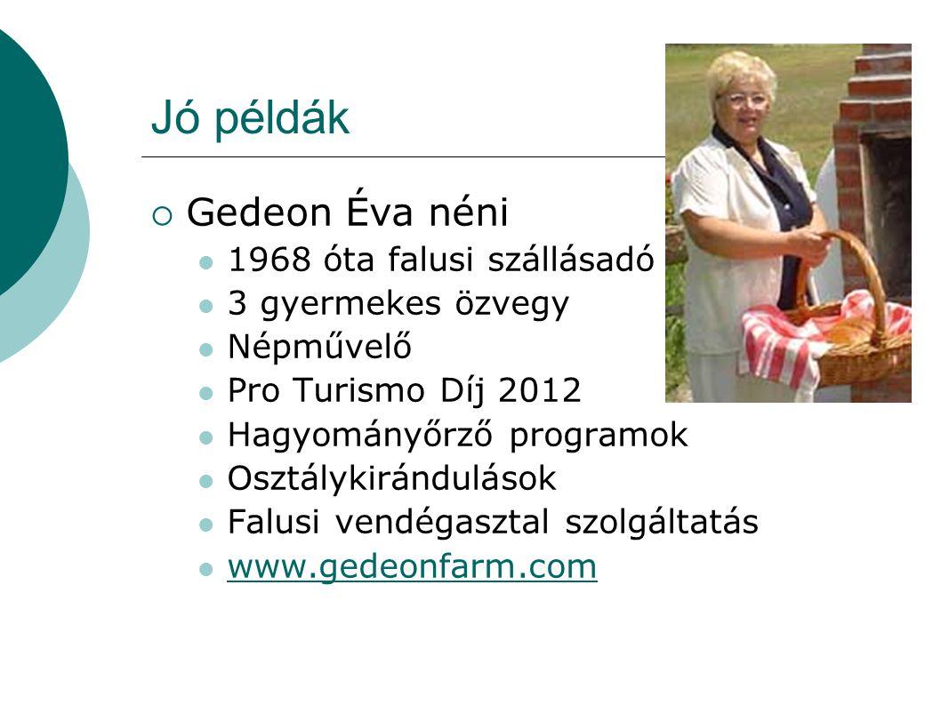 Jó példák  Gedeon Éva néni 1968 óta falusi szállásadó 3 gyermekes özvegy Népművelő Pro Turismo Díj 2012 Hagyományőrző programok Osztálykirándulások F