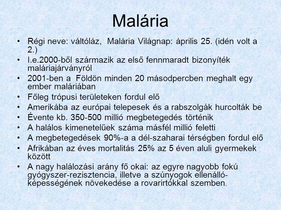 Malária Régi neve: váltóláz, Malária Világnap: április 25.