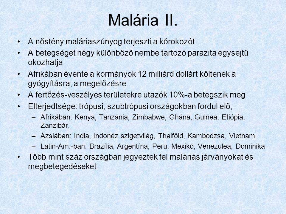 Malária II.