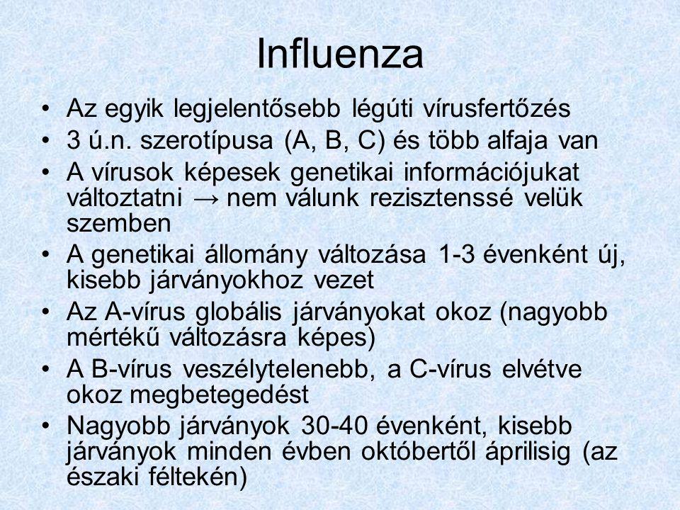 Influenza Az egyik legjelentősebb légúti vírusfertőzés 3 ú.n.