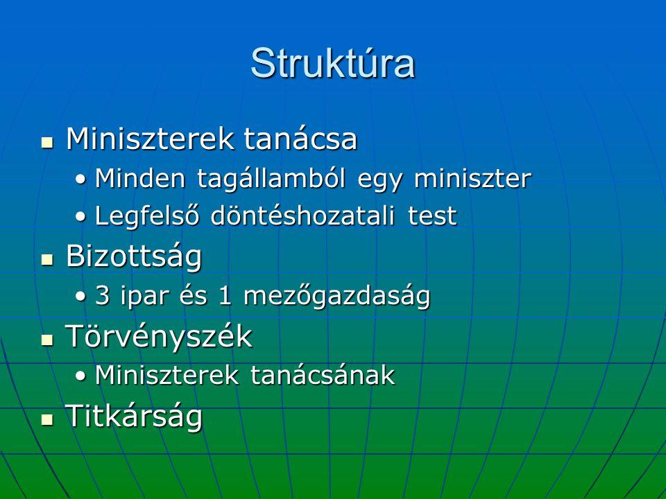 Struktúra Miniszterek tanácsa Miniszterek tanácsa Minden tagállamból egy miniszterMinden tagállamból egy miniszter Legfelső döntéshozatali testLegfels