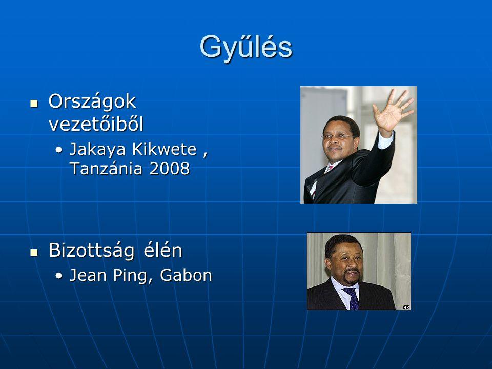 Gyűlés Országok vezetőiből Országok vezetőiből Jakaya Kikwete, Tanzánia 2008Jakaya Kikwete, Tanzánia 2008 Bizottság élén Bizottság élén Jean Ping, Gab