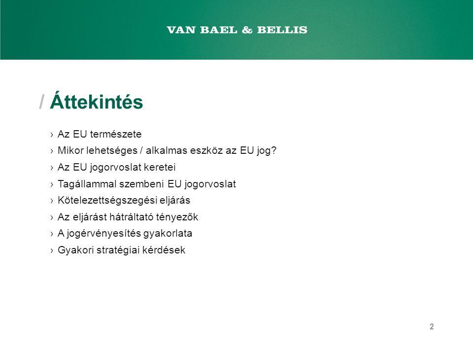 / Áttekintés ›Az EU természete ›Mikor lehetséges / alkalmas eszköz az EU jog.