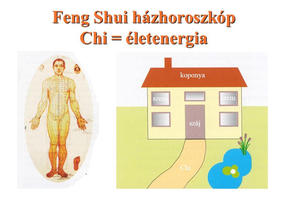 Feng Shui házhoroszkóp Chi = életenergia száj szem koponya Chi www.fengshuibolt.hu
