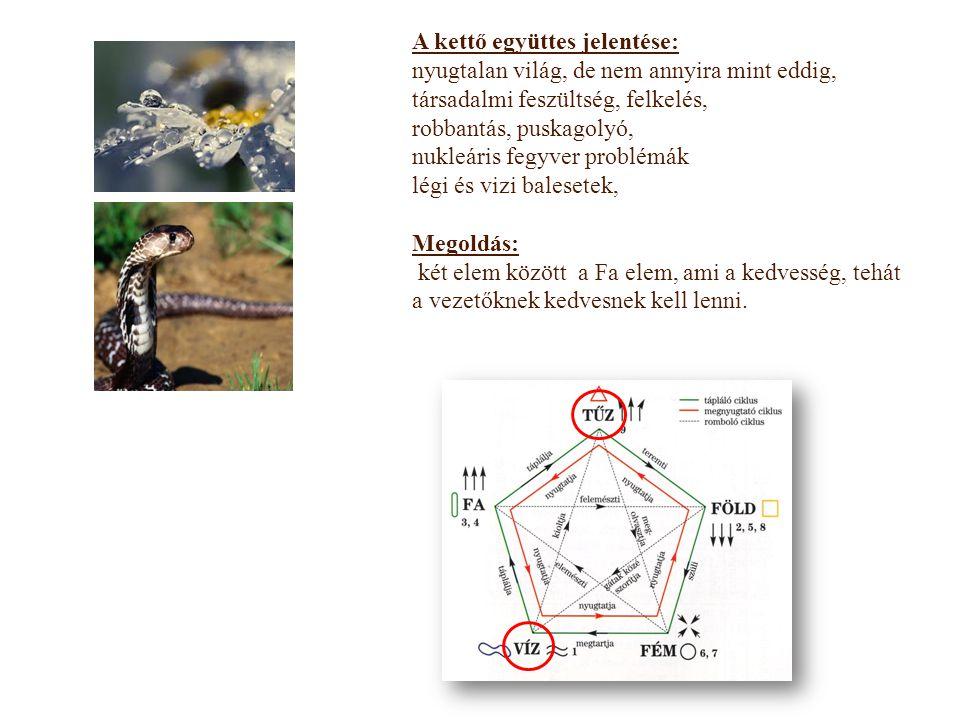 Víz – vese, vesekő, nemi szervek, húgyutak fertőzése Tűz – szív, agy, szem, idegrendszer, gyulladás, vérkeringés, vékonybél ( ha a nap oppozícióba vagy büntibe kerül, akkor komolyan kell venni a jelzést) Egészség áthidaló elem a Fa elem: sok gyümölcs, zöldség Több víz a szervezet átmosására Ha 3-as Tűz büntetés van ( kígyó, tigris, majom) akkor komoly gyulladás szervezetben,, Antioxidánsok + Peptidek Gua szám: 5 Föld 2013  1 + 3 = 4   - 4 = 5 Föld 5 Föld: emésztő rendszer, ételmérgezés www.fengshui.hu  www.fengshuibolt.hu Egészségedre!