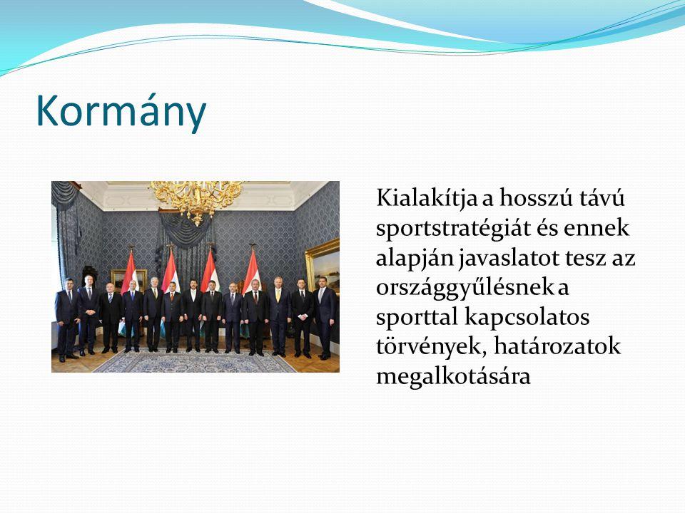 Triatlonegyesületek és az MTSZ kapcsolata I.