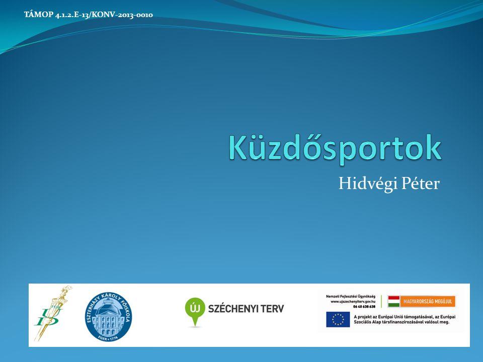 Hidvégi Péter TÁMOP 4.1.2.E-13/KONV-2013-0010