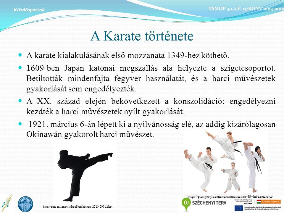 A Karate története A karate kialakulásának első mozzanata 1349-hez köthető. 1609-ben Japán katonai megszállás alá helyezte a szigetcsoportot. Betiltot