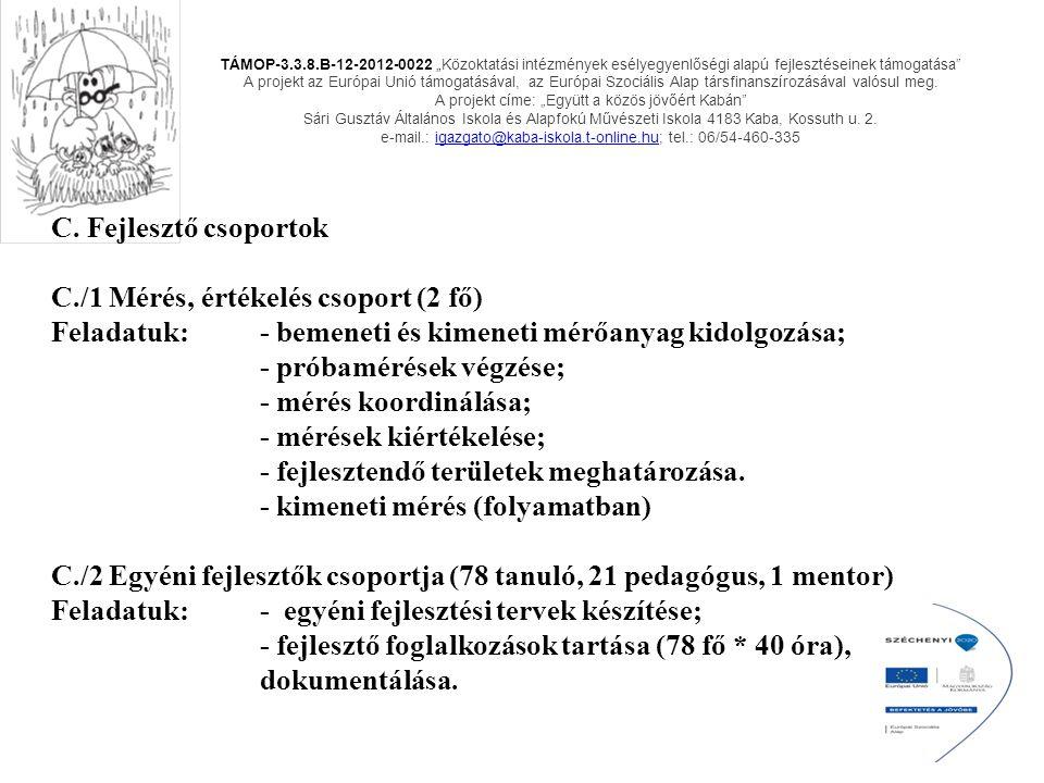 C. Fejlesztő csoportok C./1 Mérés, értékelés csoport (2 fő) Feladatuk: - bemeneti és kimeneti mérőanyag kidolgozása; - próbamérések végzése; - mérés k