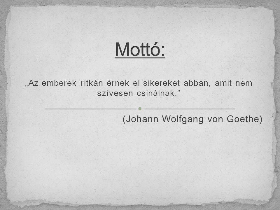 """""""Az emberek ritkán érnek el sikereket abban, amit nem szívesen csinálnak. (Johann Wolfgang von Goethe)"""