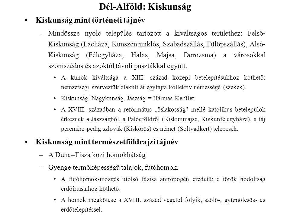 Dél-Alföld: Kiskunság Kiskunság mint történeti tájnév –Mindössze nyolc település tartozott a kiváltságos területhez: Felső- Kiskunság (Lacháza, Kunsze