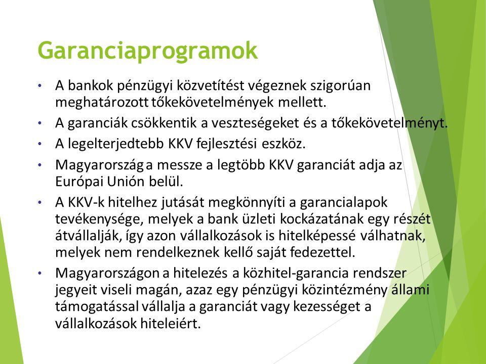 Garanciaprogramok A bankok pénzügyi közvetítést végeznek szigorúan meghatározott tőkekövetelmények mellett. A garanciák csökkentik a veszteségeket és