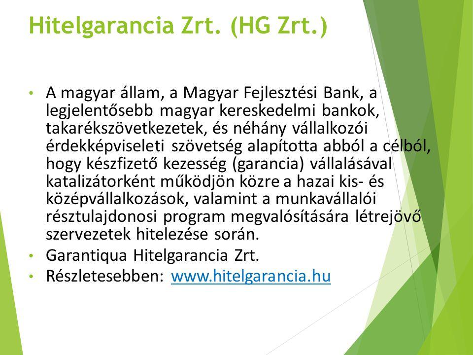 Hitelgarancia Zrt. (HG Zrt.) A magyar állam, a Magyar Fejlesztési Bank, a legjelentősebb magyar kereskedelmi bankok, takarékszövetkezetek, és néhány v