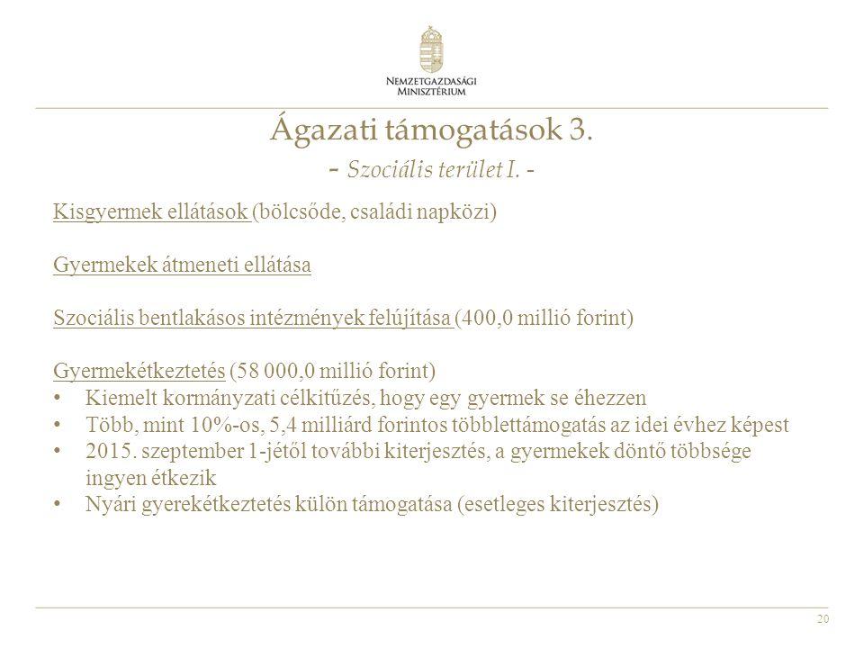 20 Ágazati támogatások 3.- Szociális terület I.