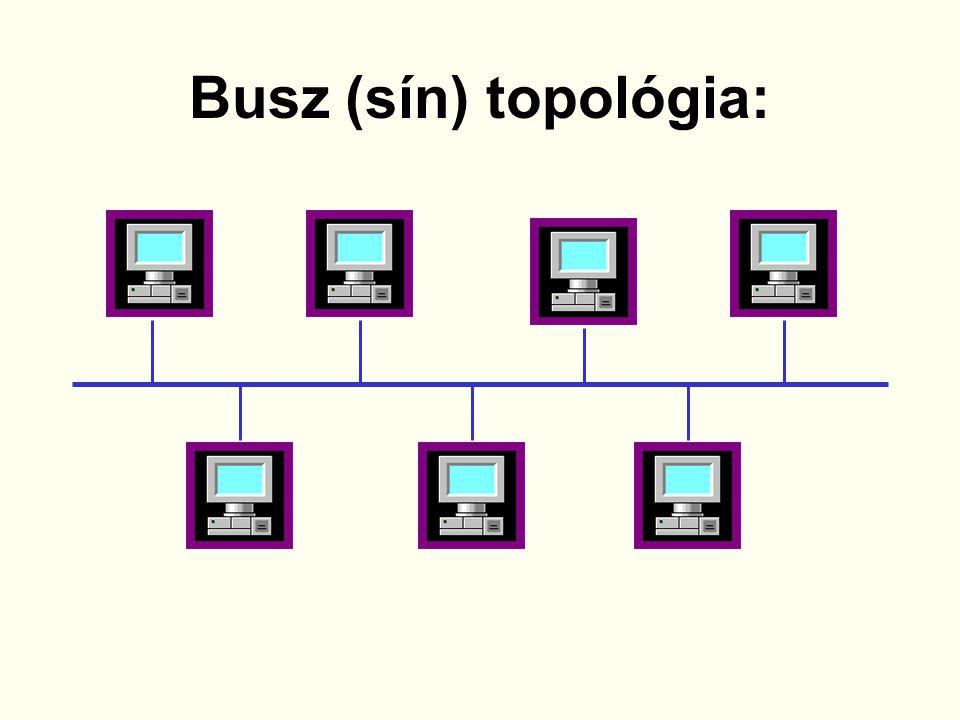 18Készítette: Ambrusné Somogyi Kornélia Sín topológia Minden állomás egy közös vonalhoz kapcsolódik.