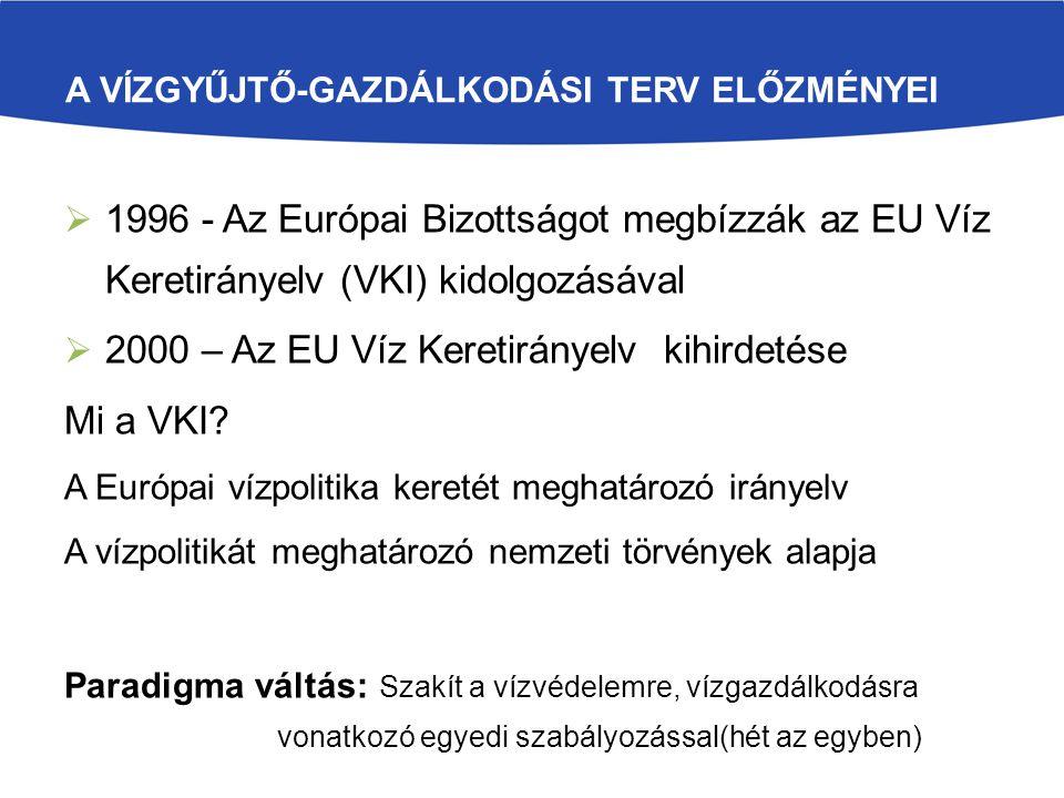 A VÍZGYŰJTŐ-GAZDÁLKODÁSI TERV ELŐZMÉNYEI  1996 - Az Európai Bizottságot megbízzák az EU Víz Keretirányelv (VKI) kidolgozásával  2000 – Az EU Víz Keretirányelv kihirdetése Mi a VKI.