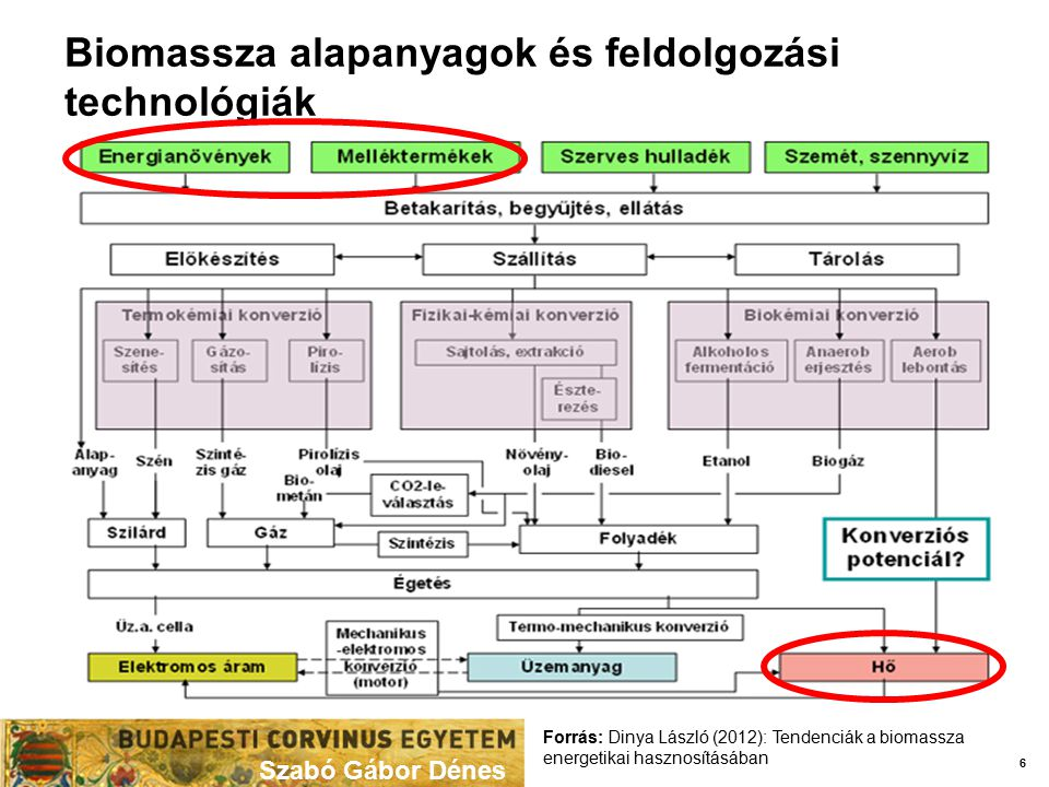Biomassza alapanyagok és feldolgozási technológiák Szabó Gábor Dénes 6 Forrás: Dinya László (2012): Tendenciák a biomassza energetikai hasznosításában